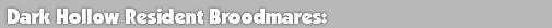 Headers_Mares_01.png - 8.22 kB