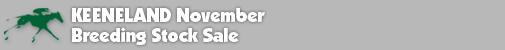 SalesHeader_KEENov.png - 9.75 kB